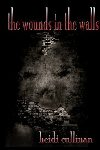 Wounds in the Walls