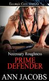 Prime Defender