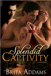 Splendid Captivity
